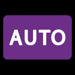 auto measure
